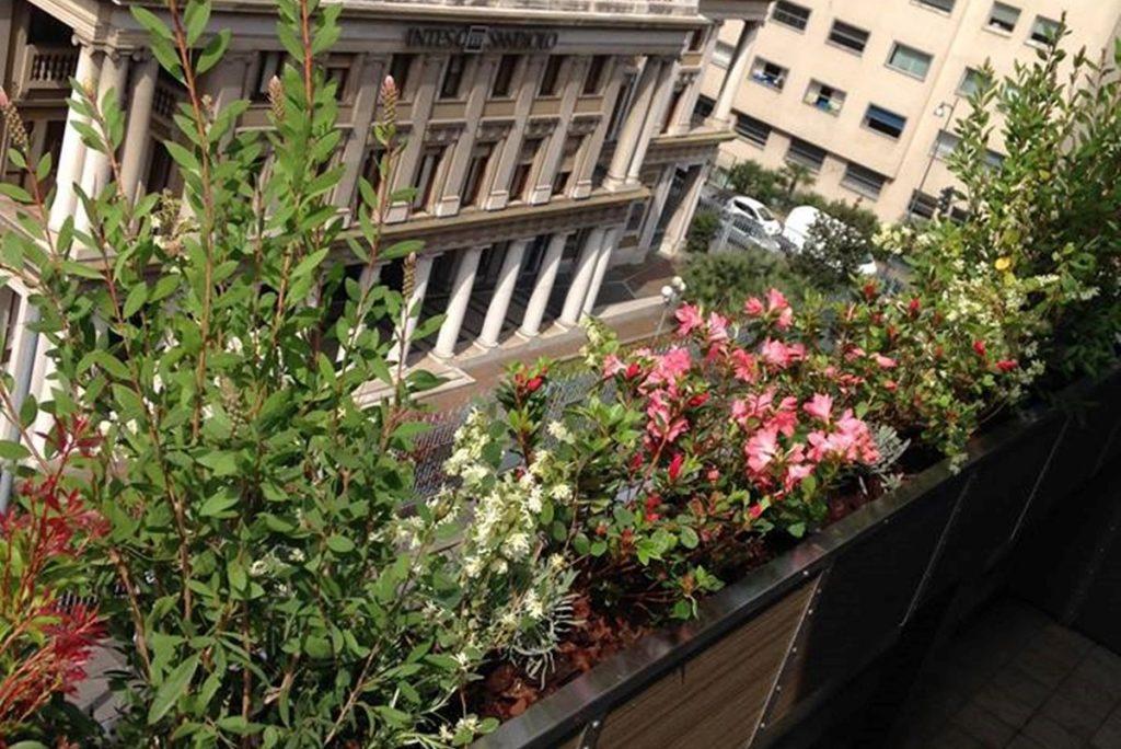 Un terrazzo fiorito colombo green philosophy for Tutto per terrazzo