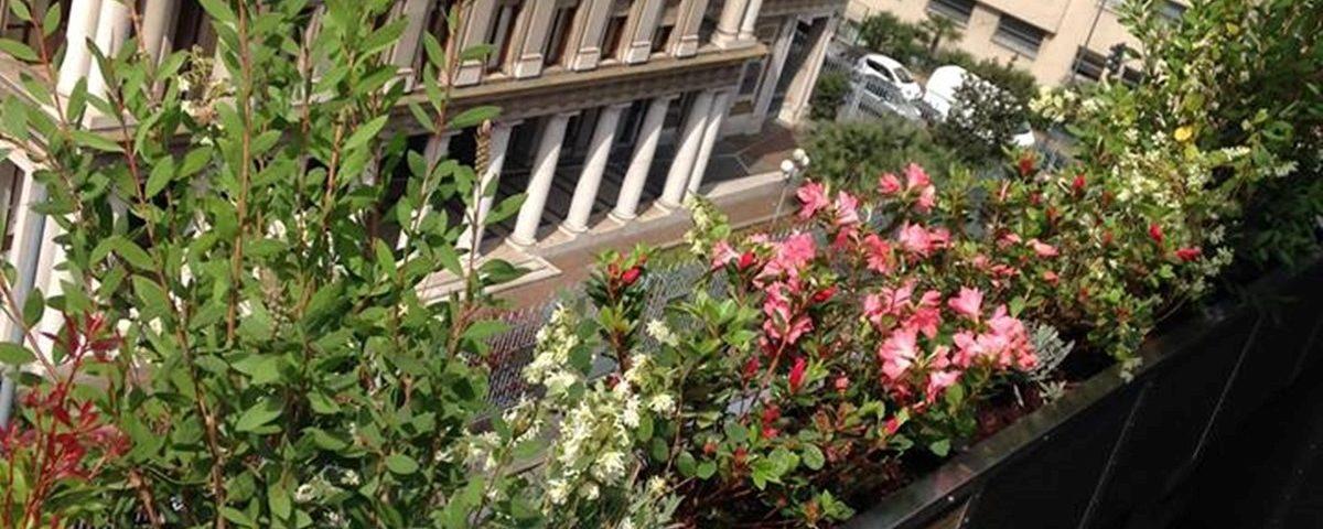 Un terrazzo fiorito – Colombo Green Philosophy